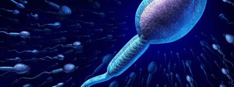 Para que serve o espermograma?